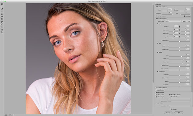 Get superb-looking portraits in Photoshop - Amateur Photographer