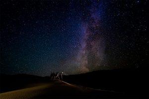 APOY Caron Steele after dark