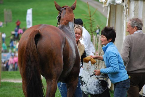 Grooms washing off horse after cross-country phase
