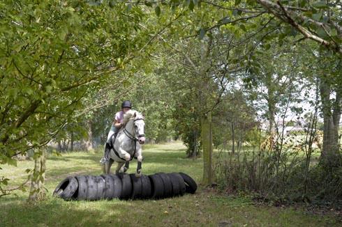 Riding B&B in Oxfordshire