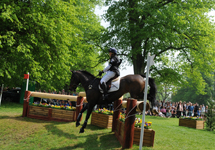 Ben Hobday at Badminton 2011 on Uptons Who
