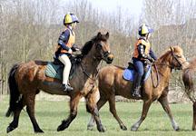 Junior endurance riders