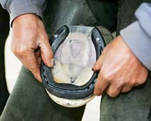 Shoeing how pads can help avoid lameness horse amp hound