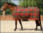 Of The British Summer It S Not Unusual For Night Time Temperatures To Drop Chilly Levels If You Don T Want Leave Your Horse Without A Rug