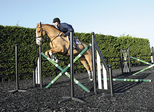 Teaching a young horse to jump