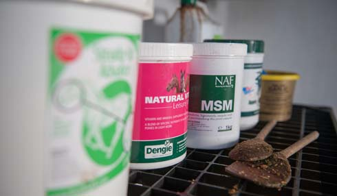 Equine supplements: which one to choose?