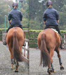 Saddle_slip_image_Oct_2012.jpg