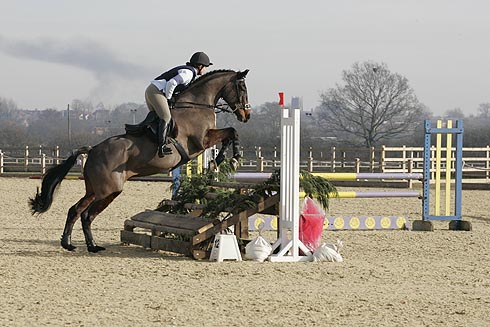 Arena eventing at Weston Lawns