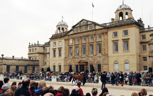 The vet inspection taking place in front of Badminton house