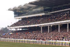 cheltenham_crowd.jpg