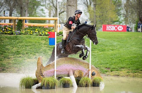 Andrew Nicholson and Quimbo at the 2013 Rolex Kentucky Three-Day Event held at the Kentucky Horse Park in Lexington, KY.