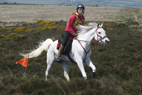 Golden Horseshoe Ride