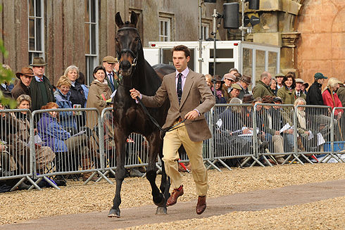 Harry Meade Badminton Horse Trials trotup