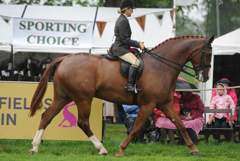 Loraine Homer and Major Moylaw, Hunter champion of the Dodson&Horrell Hunter Show at Equi trek Bramham International Horse Trial 2012