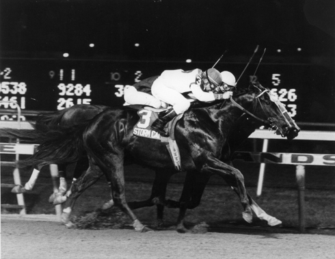 Storm Cat and jockey Chris McCarron wins the 1985 Young America Stakes (Grade I) at Meadowlands on October 10, 1985. Photo by: Jim Raftery / Turfoto (Track Photographer)