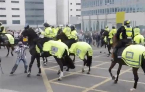 Police horses in football violence