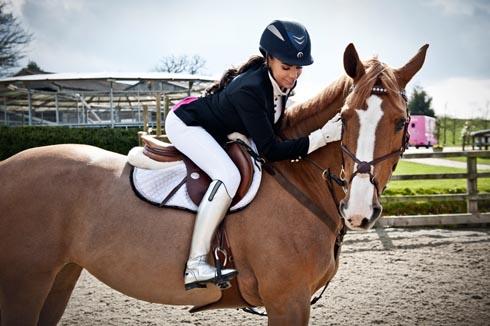 Kp Equestrian Expands Its Range Horse