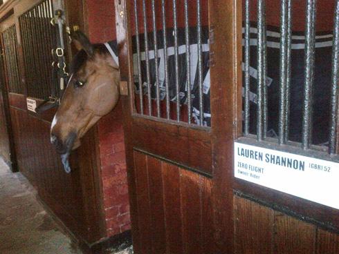Zero Flight in his stable at Badminton