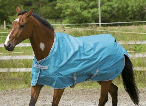 Bucas Launches New Summer Turnout Rug