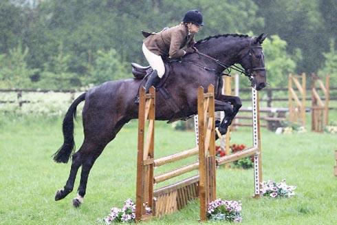 Digby, The Horse Show champion