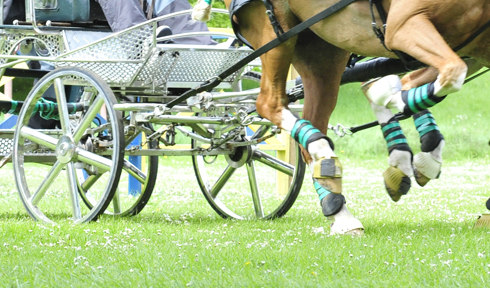 Image result for carriage driving cone competitions