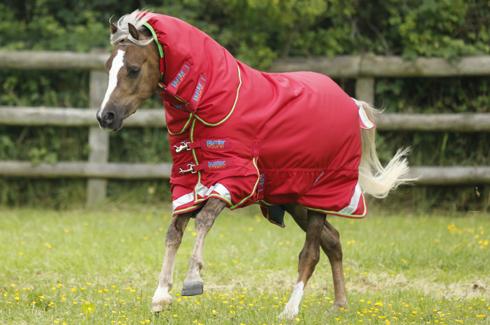 Premier Equine Launches Pony Rug Range