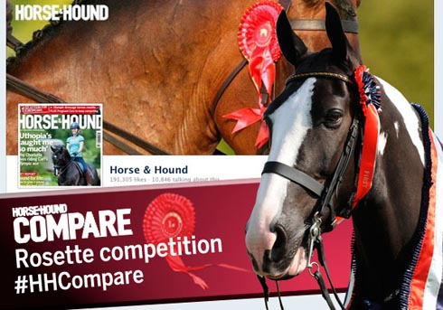Win with H&H Compare