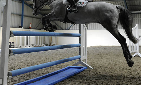 Jumping schooling over water tray