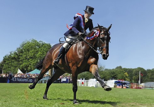 The British Horse Society Supreme Ridden Horse Championship - Katie Jerram and Dunbeacon