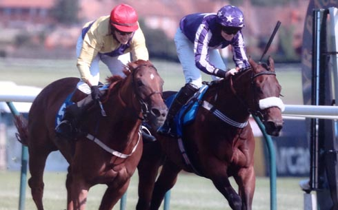 Foreign Exchange wins at Ayr
