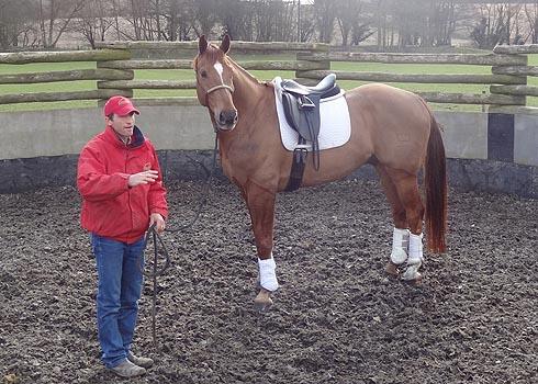 Jason Webb of Australian Horsemanship