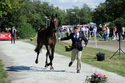 Tom McEwen and Diesel fail the first trot-up at the European Eventing Championships 2013