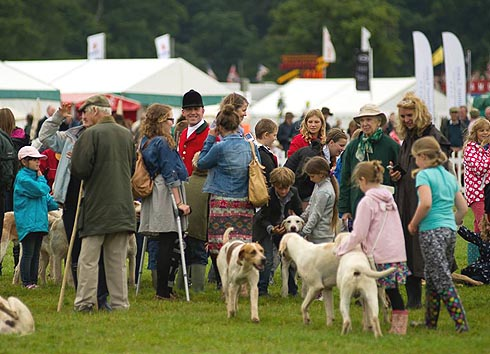 New Forest hounds meet the public