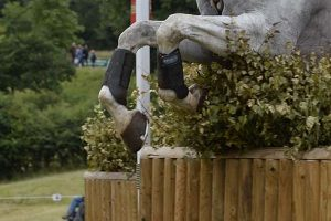 A horse jumping a cross-country fence
