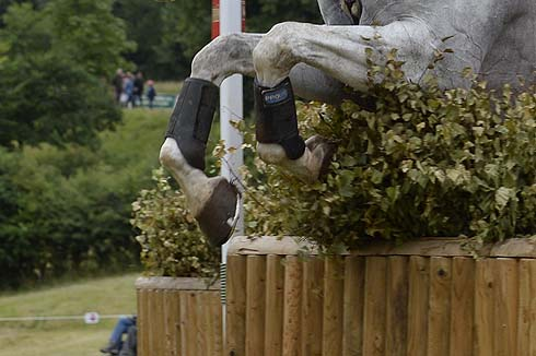 How to buy an eventer: what to look for