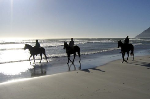 Safe Horse Riding On The Beach