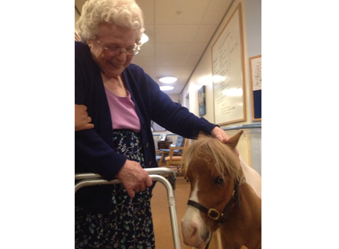 Lean on me: Monet makes a new friend in a care home