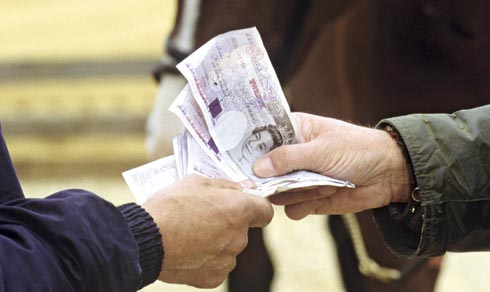 Horses are expensive so check out these money-saving tips for horse owners