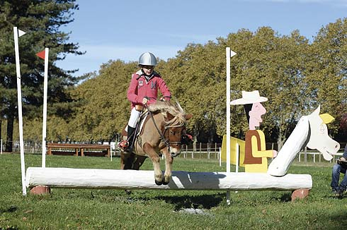 Pony on the mini cross-country course at Pau in France on 27 October 2013