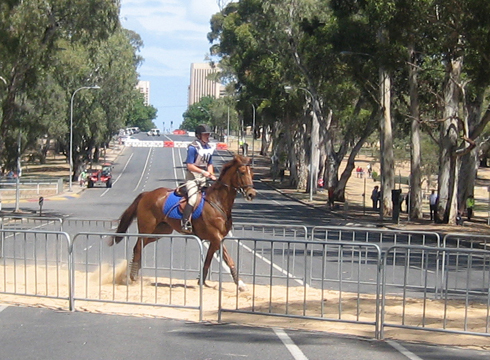 Adelaide Horse Trials