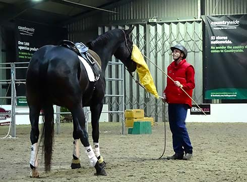 Jason Web working with Podge at Your Horse Live