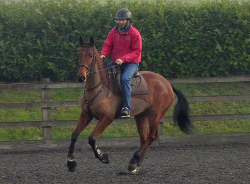 Jason riding Bryony Whittington's Carter