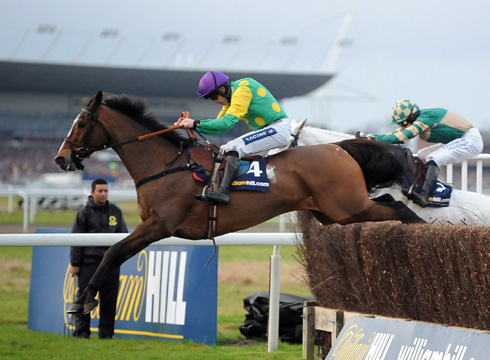 racehorses to remember kauto star