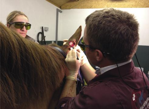 Laser surgery on ears