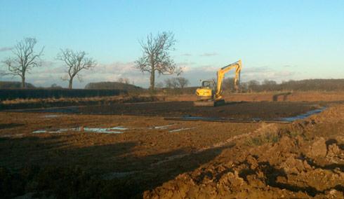 Work on Lauren Shannon's new yard, early February 2014