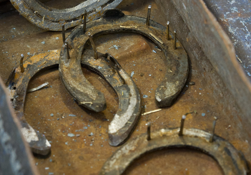 How to remove a horse shoe