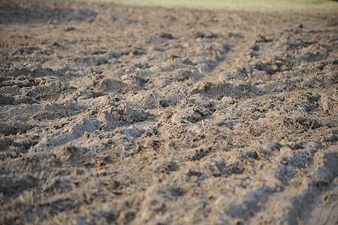 muddy conditions