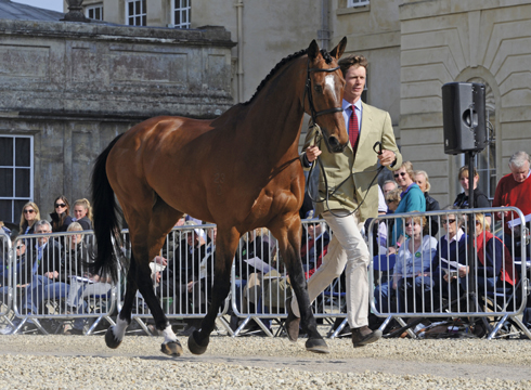 William Fox-Pitt Parklane Hawk Badminton Trot Up