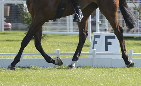 A dressage test at Badminton