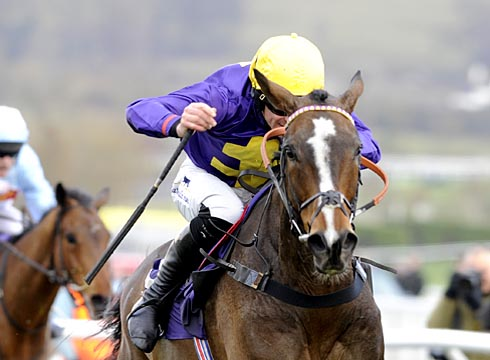 Gold Cup winner Lord Windermere is among the potential 2015 Grand National runners